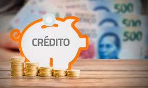 Pago de cuotas de creditos